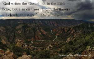 Day 30- Wilderness Quote