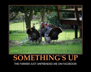 ... farmer just unfriended me on Facebook – funny Thanksgiving turkeys