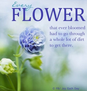 Every Flower That Ever Bloomed Had To Go Through A Whole Lot Of Dirt ...