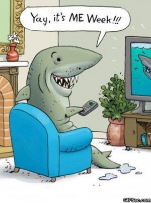 Funny Pictures – Shark Week - Funny Pictures, MEME and Funny GIF ...