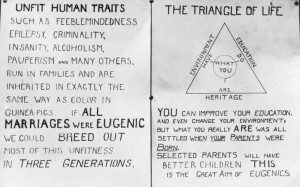 The American Eugenics Society promoted ideas of racial betterment and ...