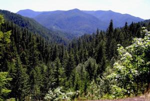 Cascade Mountains Oregon
