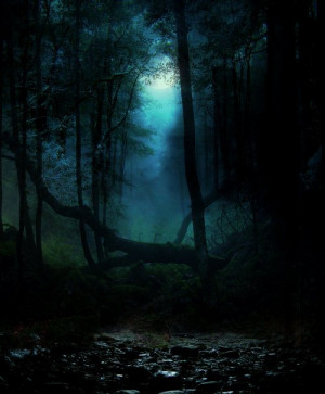 am a forest and a night of dark trees – but he who is not afraid ...