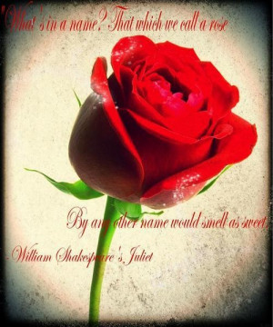 William shakespeare quotes and sayings love juliet