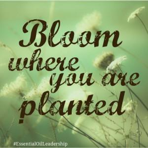 inspire #bloom #quote #EssentialOilLeadership