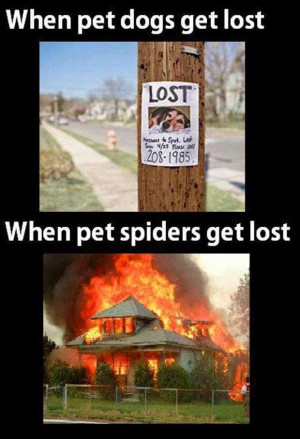 Life Love Quotes When Pet Dogs Get Lost