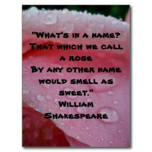 William Shakespeare Rose Quote Pink Postcard