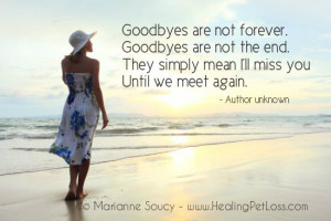 Goodbyes are not the end