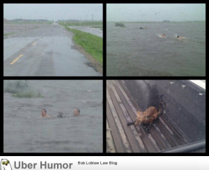 It rained 8 inches in southern Saskatchewan and these guys saved ...