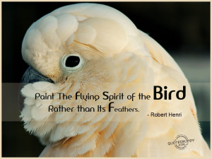 Birds Quotes Graphics, Pictures