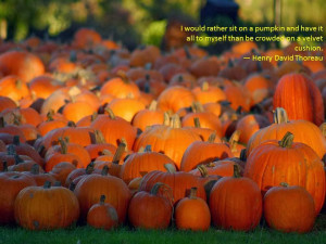 First Day Of Autumn Quotes Some autumn quotes
