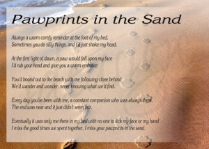 Featured Item: Pawprints in the Sand