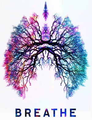 Lungs, colourful, breath
