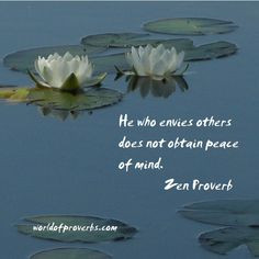 Famous Quotes By Zen Proverb ~ Spiritual Insights