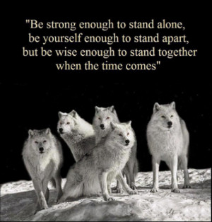 Wolf Pack Quote