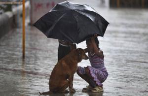 Early Monsoon Rains Flood Northern India