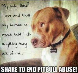 Pitbull Dog Quotes Tumblr #love #protect #dogs #pitbulls