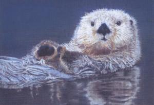 sea otter view portfolio subject sea otter medium pastel completion