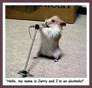 Funny Photos Of Animals With Funny Sayings in Hindi Saying Funny Thing ...