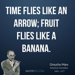 Time flies like an arrow; fruit flies like a banana.