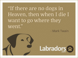 Article Tags: # quotes # Mark Twain
