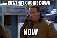 ... arnold schwarzenegger quotes more fit food posts diet humor arnold fit