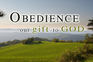 You want to serve me? Tend to my sheep—those little lambs that I've ...