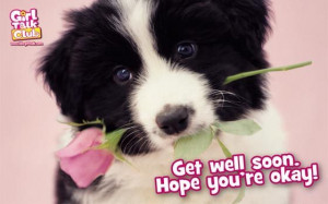 yorkshire_rose Hope you Get Well Soon