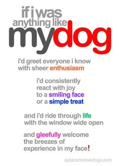 ... .com •• if i was anything like my dog - A Place to Love Dogs More