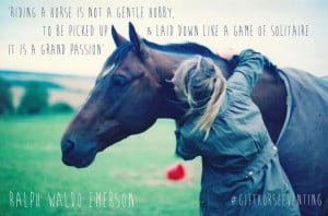 horse quotes #gifthorseeventing