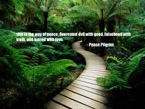 This Is The Way Of Peace, Overcome Evil With Good, Falsehood With ...