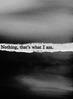... not good enough, that I'm fat and ugly..that I don't deserve to live