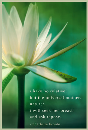 have no relative but the universal mother, nature: i will seek her ...