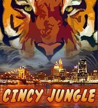 ... Bengal Punch, Bengal Football, Deyes Mobiles, Bengals Car, Bengal Fans