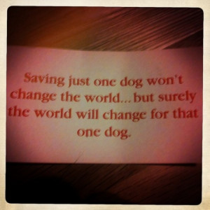 Wouldn't you hope that someone would adopt you and save your life ...