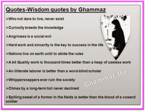 quotes wisdom quotes by ghammaz