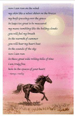 sympathy poem image search resultsHors Poems, Sympathy Horses Quotes ...