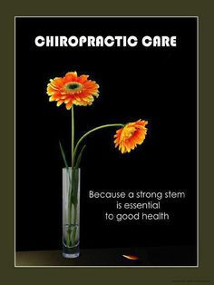 Cool Chiropractic Quotes