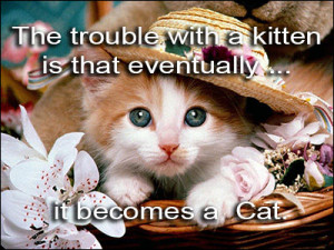 The trouble with a kitten is that eventually ... it becomes a cat.