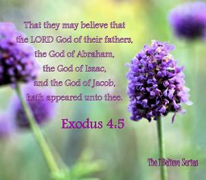 Exodus Bible Verses