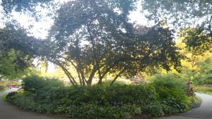Shakespeare Garden and Rose Garden from Stanley Park