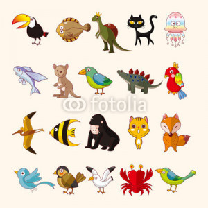Pictures tags parrot cute bird birds massage colour funny pictures