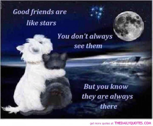 Friends-like-stars-quote-friendship-beautiful-sayings-pictures-pics ...