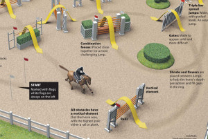 Horse Show Jumping Quotes Horse show jumping infographic