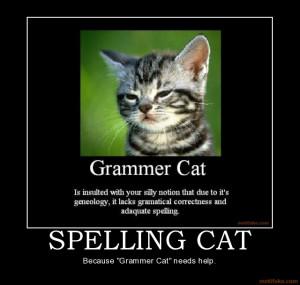 spelling-cat-spelling-cat-grammar-demotivational-poster-1215799181.jpg