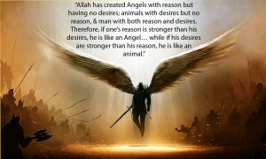 angels animals and humans