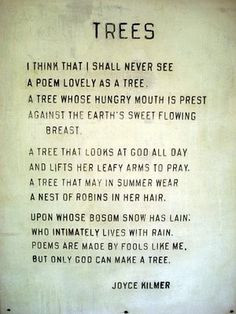 love this tree poem More