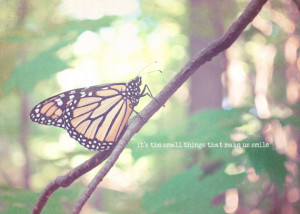 Monarch Butterfly Smile Quote Shabby Chic Vintage Easter Soft Pastel ...