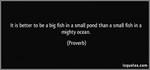 It is better to be a big fish in a small pond than a small fish in a ...