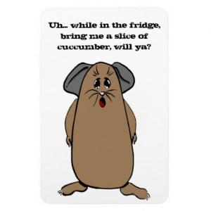 guinea_pig_sayings_flexible_magnet-ra4e431f6fdbd4642837312327f26fdc6 ...